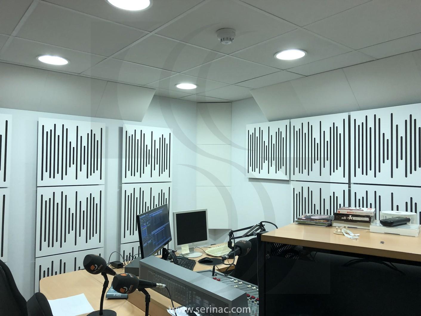 estudio radio san vicente serinac